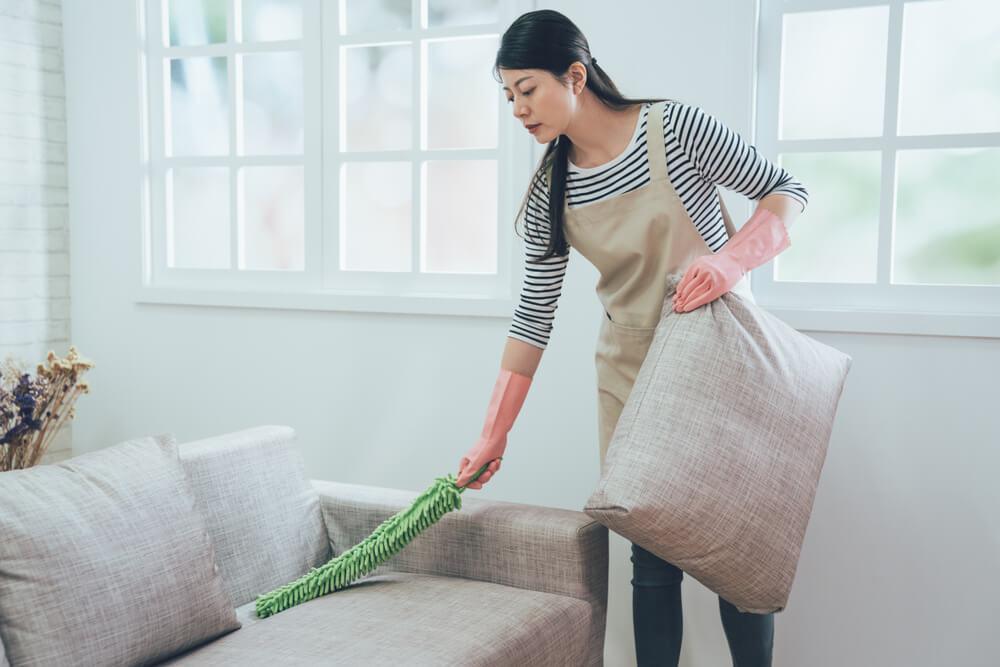 皮沙發清潔:除塵撢